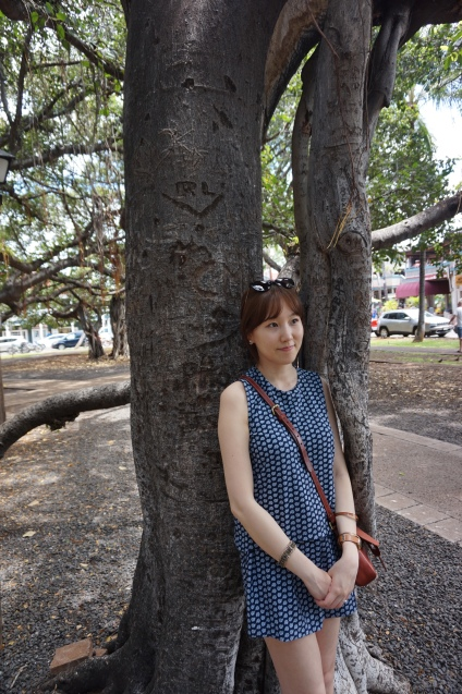 Lahaina - We call it 'The Big Tree'