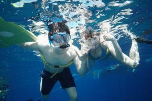Snorkelling at Molokini